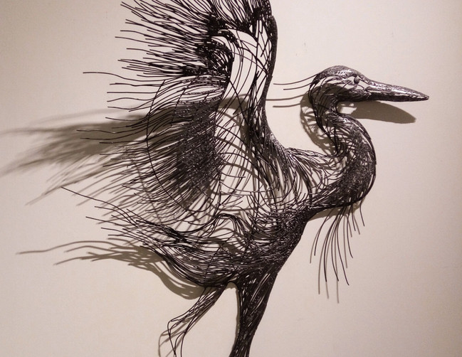 Record_Grey Heron