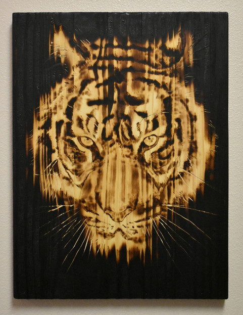 Extinction crisis_tiger
