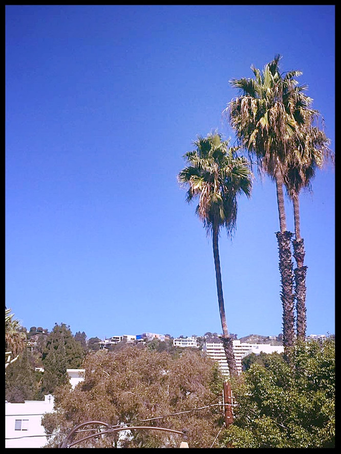 The Real La La Land - Day 6