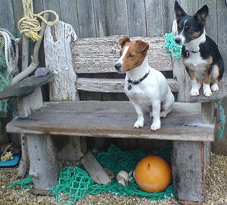 Ben Fearnside_Driftwood bench coastal ga
