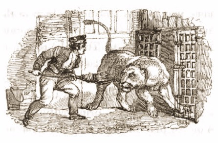 Drawing of lion and keeper, 1820's, Tower of London Menagerie