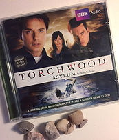 CD cover 'Torchwood Asylum' BBC Radio 4 drama by Anita Sullivan