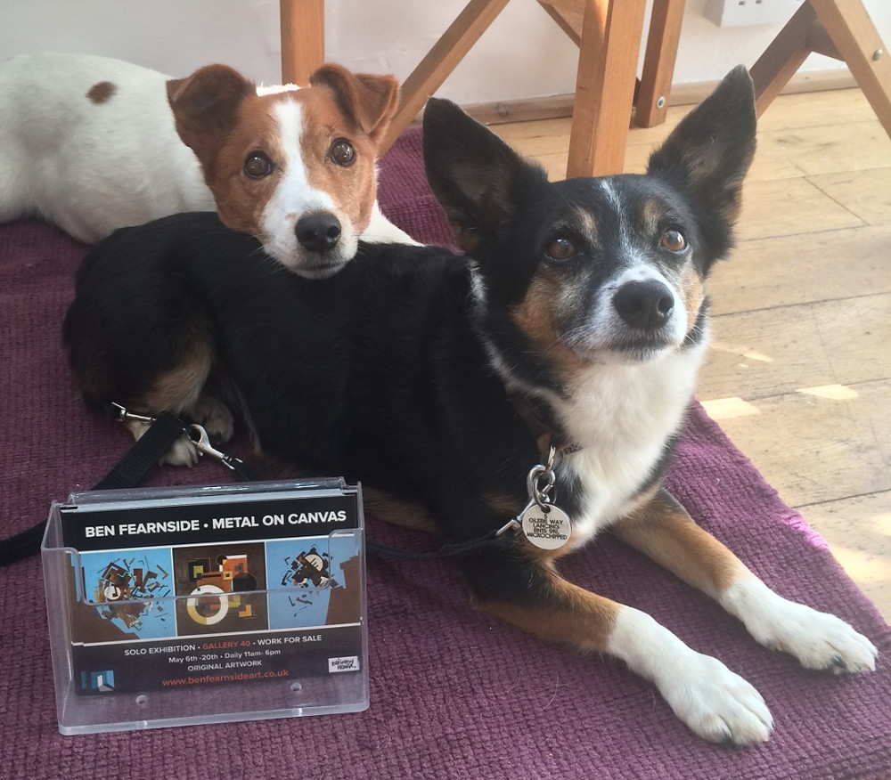 Two small dogs with flyers for exhibition