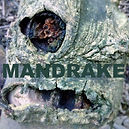 Sinister tree 'Mandrake' radio 4 drama by Anita Sullivan