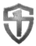 strongfirst%2520logo_edited_edited.png