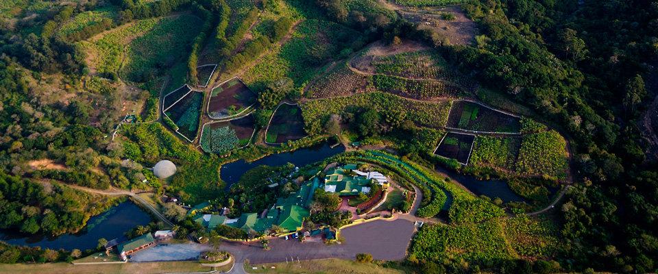 Mac-Banana-Aerial-View-Res.jpg