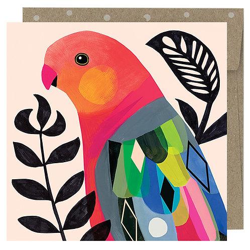 Mini Card - King Parrot