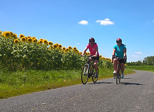 cycling and sunflowers5.jpg