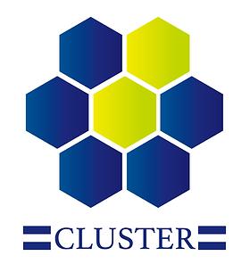 cluster_logo_big.png