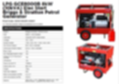 8 kW Portable Gas Generator .png