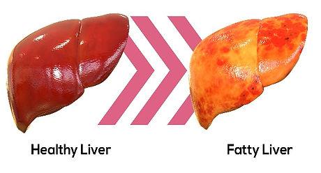health_fatty.jpg