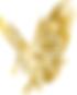 Gold_eagle.png
