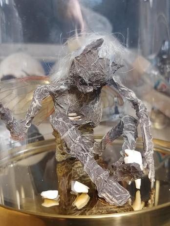 Close up of Mummified Faerie