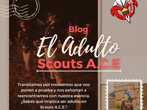 El adulto en Scouts A.C.E.