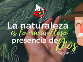 La naturaleza: maravillosa presencia de Dios según BP