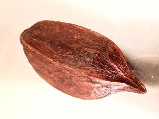 Taucherli Chocolate