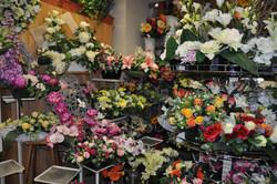 Une gamme de plantes artificielles
