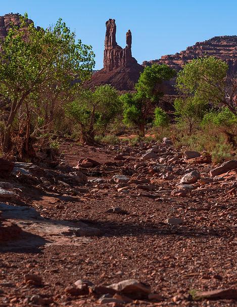 Bears Ears National Monument, public land, valley of the gods, utah, rock