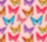פרפרים.jpg