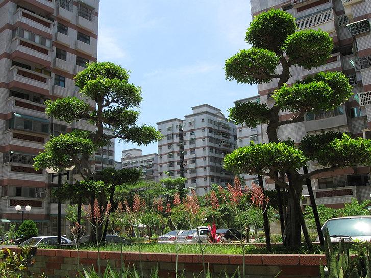 צילום של בניינים רבי קומות