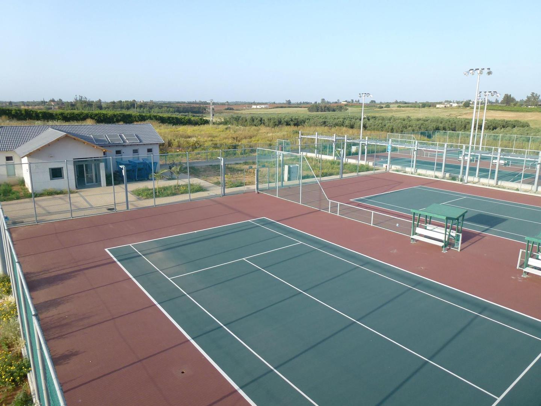 טניס 80.jpg
