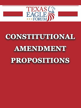 ConstitutionalAmendmentProps.jpg