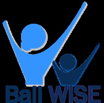 Bali_WISE_Logo_new_medium.png