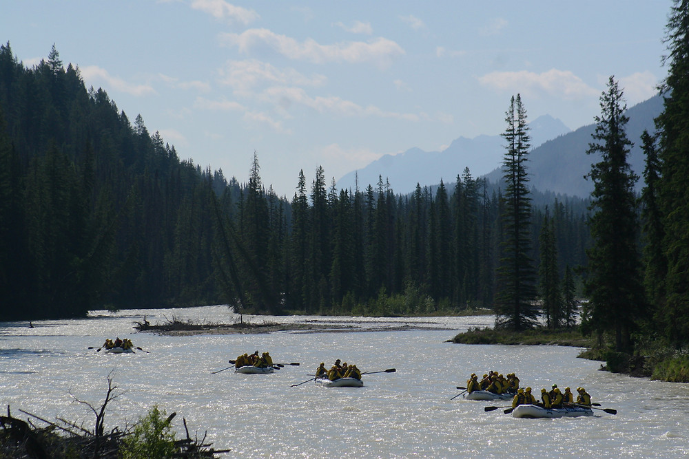 Rafters enjoying the views and whitewater in Golden BC