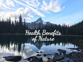 Mental and Physical Health Benefits of Nature
