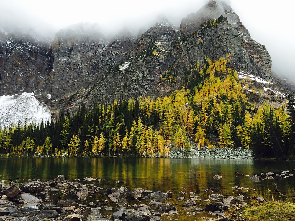 Larch Valley in Alberta in the Fall