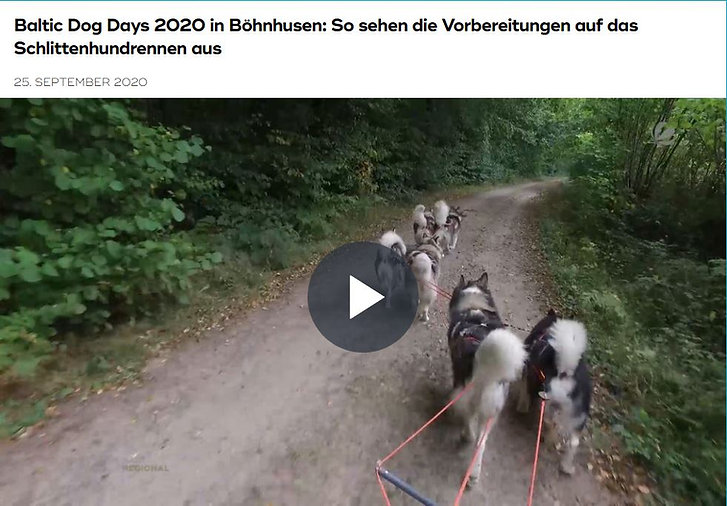 Baltic Dog Days 2020.JPG