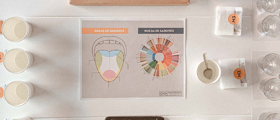 Kit de catación en casa