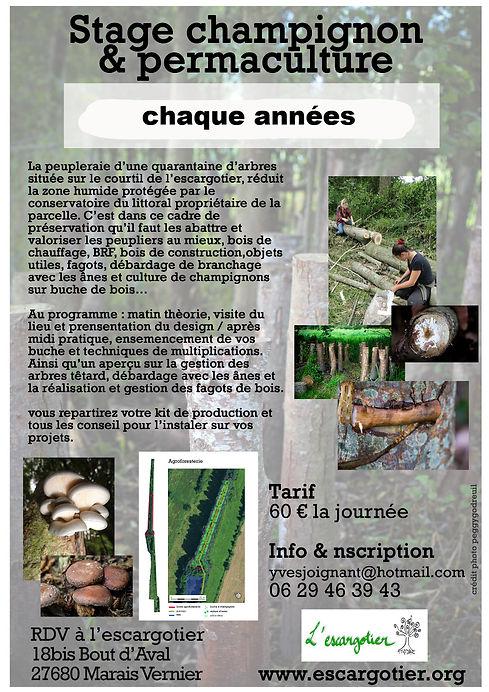 tract-stage-champignon-2017_edited.jpg