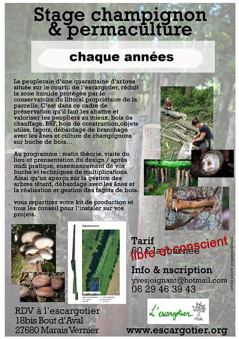 tract-stage-champignon-2017_edited_edite
