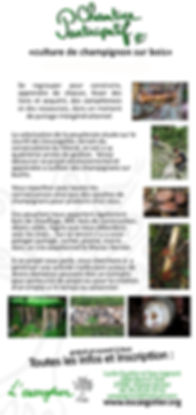 tract-chantier-champignon__edited.jpg