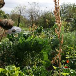 jardin de l'escargotier