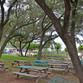 Under the Oaks Picnic Area #2
