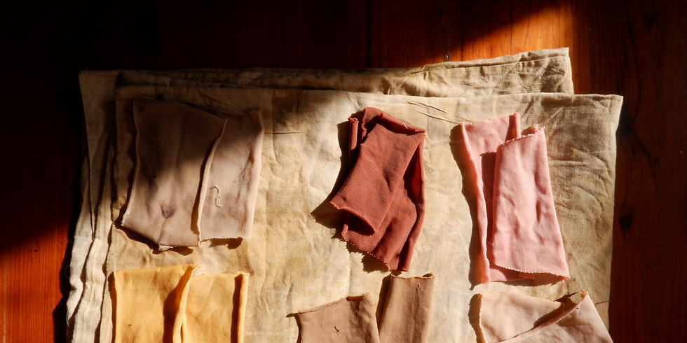 Introduction to Natural Dyeing Workshop // 40€