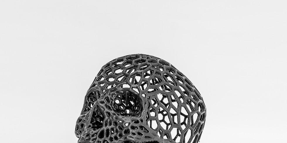 Workshop Impressão 3D // 60/90€