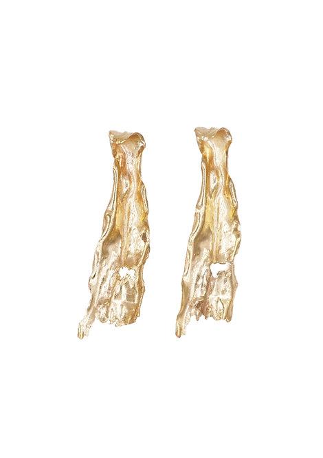 """""""Phlebodium"""" Earrings"""