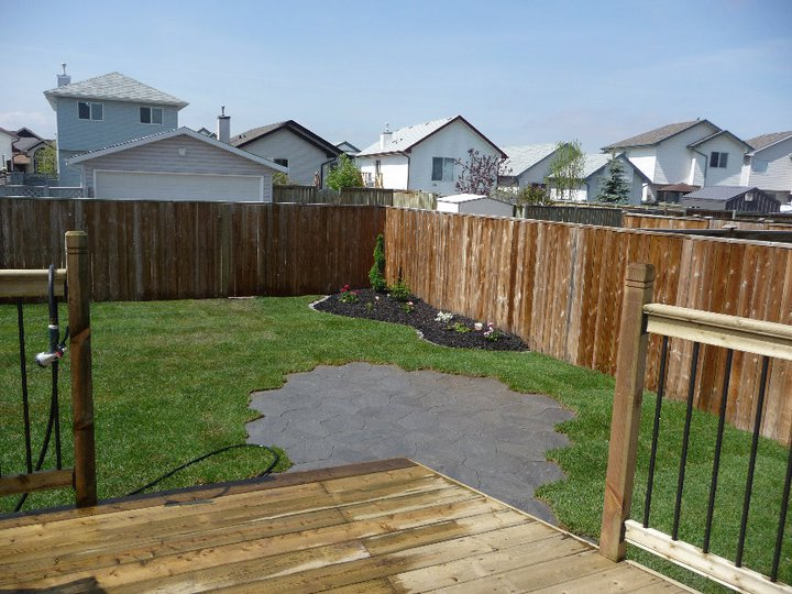 patio sod and gardens.jpg