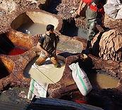 morocco-1103074_960_720.Fes.jpg