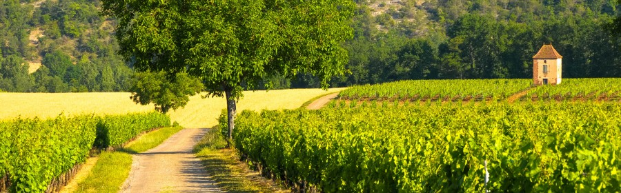 Le vignoble de Cahors