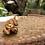 Thumbnail: Tarte au caramel et aux noix - 6 parts