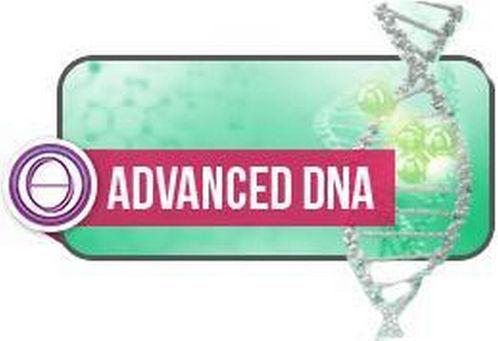 advanced (Kopie).jpg