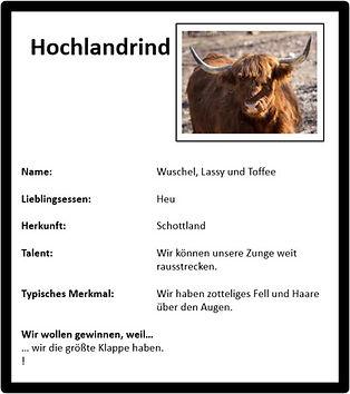 Hochlandrind.jpg