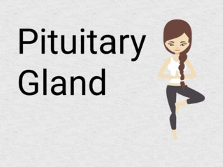Yoga for Pituitary gland, Yoga asanas, pranayamas for a healthy pituitary gland