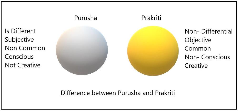 Samkhya Karika 11