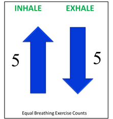 Equal breathing Exercise Counts Patterns