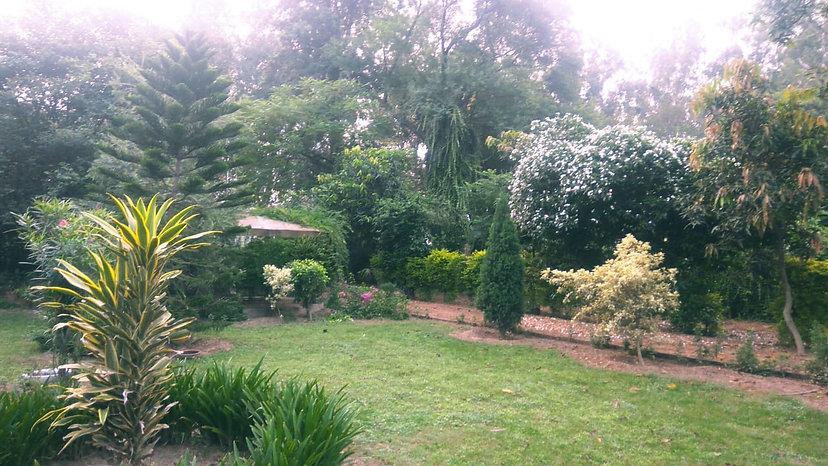 Shahzadpur farm Yoga Retreat